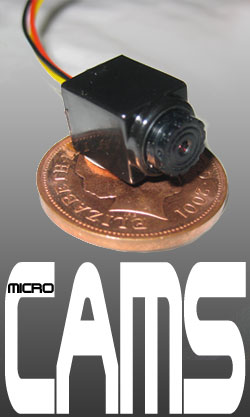 Micro miniature video cameras for mystery shopping